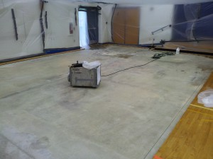 Mold contaminated water damaged gym floor